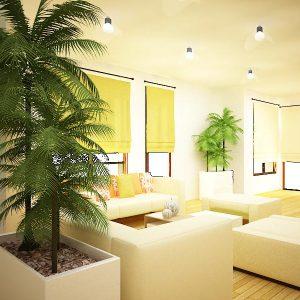 Interior-design (3)