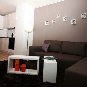 Interior-design (9)